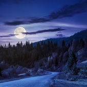 Winding road to forest in mountains at night — Stock Photo