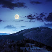 Pine trees near valley in mountains  on hillside at night — Stock Photo