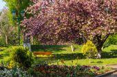 Alte stadtpark mit laterne — Stockfoto