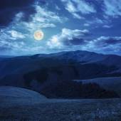 High wild plants at the mountain top at night — Stock Photo