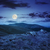 Light on stone mountain slope with forest at night — Stock Photo