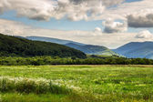 Field near home in mountains — Stock Photo