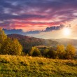 Yellow trees on hillside on mountain background at sunset — Stock Photo #55938455
