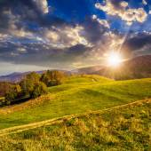 Trees on autumn meadow in mountains at sunset — Stock Photo
