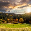 Road behind autumn forest at sunset — Stock Photo #57095999