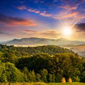 Field  in mountains at sunset — Stock Photo