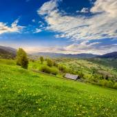 Village on hillside meadow with forest in mountain — Stock Photo
