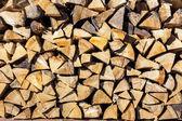 Drewno iglaste suche w słońcu — Zdjęcie stockowe