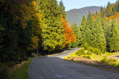 Curve road in mountain — Stock Photo