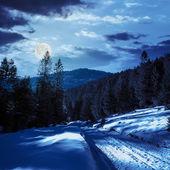 Zaśnieżonej drodze do lasu iglastego w górach w nocy — Zdjęcie stockowe