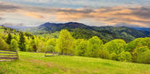 Fence on hillside meadow in mountain at sunrise — Stock Photo