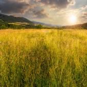 Wiese mit hohem Gras in Bergen bei Sonnenuntergang — Stockfoto