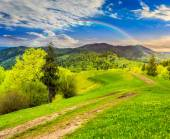 Road on hillside meadow in mountain at sunrise — Foto Stock