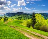 Road on hillside meadow in mountain at sunrise — Stock Photo