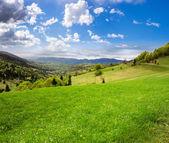 Village on hillside meadow — Stock Photo