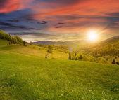 Położona na wzgórzu łąka na zachodzie słońca — Zdjęcie stockowe