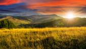 Meadow with tall grass in mountains at sunset — Stock Photo