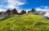 Path through boulders on hillside — Stockfoto