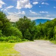 Road through the forest in mountains — Stock Photo #75150849