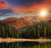 Lake near the mountain in pine forest at sunset — Stock Photo