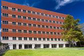 Gonda (Goldschmied) Neuroscience and Genetics Research Center — Stock Photo