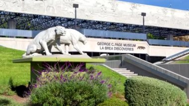 George C. Page Museum at Le Brea Tar Pits — Stock Video