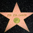 ������, ������: Zsa Zsa Gabor Star on the Hollywood Walk of Fame