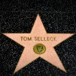 ������, ������: Tom Selleck Star on the Hollywood Walk of Fame
