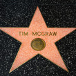 ������, ������: Tim McGraw Star on the Hollywood Walk of Fame