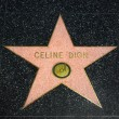 Постер, плакат: Celine Dion Star on the Hollywood Walk of Fame