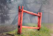 Red Stockade Fence in Forest — Stock Photo