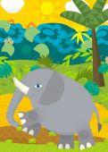 Wild elephant illustration — Stok fotoğraf