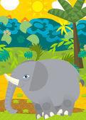 Wild elephant illustration — ストック写真