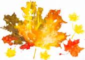 Autumn leaves watercolor print on paper. child drawing — 图库照片
