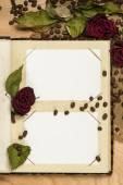 Photo album and dry red roses on coffee seeds — Stock Photo