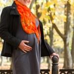 Pregnant woman in autumn park — Stock Photo #60216539