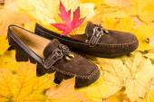 Shoes on autumn leaves background — Stock Photo