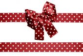Brown bow and ribbon with white polka dots made from silk — Stockfoto