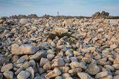 Sharp rocky coastline — Stock Photo