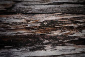 Old wooden grunge stack timbers — Stock Photo