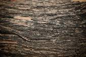 Old wooden grunge panels — Stock Photo