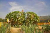Big artificial pumpkin at Jim Thomson farm  — Stockfoto