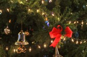 Red bow and bell decorated on christmas tree — Stock Photo