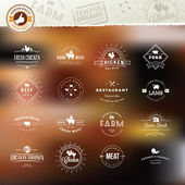 Set of vintage style elements for labels and badges for meat, fresh organic products, on the stylized background — Stock vektor