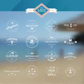 Set of vintage style elements for labels and badges for seafood, fish market, restaurant, on the sea background — Stock Vector