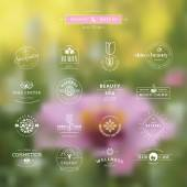 Set of vintage style elements for labels and badges for beauty, health care, cosmetics, spa and wellness, on the nature background — Wektor stockowy