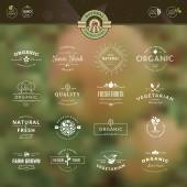 Set of vintage style elements for labels and badges for organic food and drink, on the nature background — Stock Vector