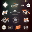 Collection of vintage style premium quality badges and stickers for designers — Stock Vector #80412692