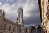 Bell Tower  Cathedral — Stock Photo
