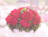 Beautiful soft focus red roses bouquet — Stock Photo